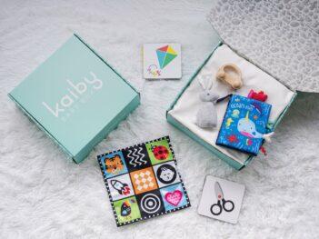 Tiny Ones Kaiby Box KB5059