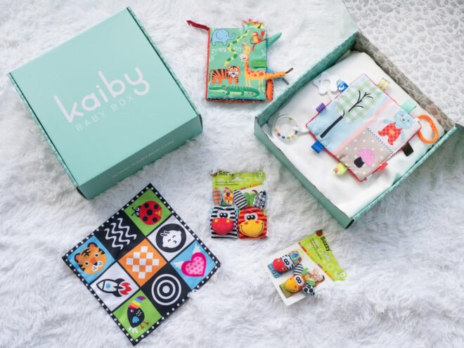 Wild Ones Kaiby Box KB5057