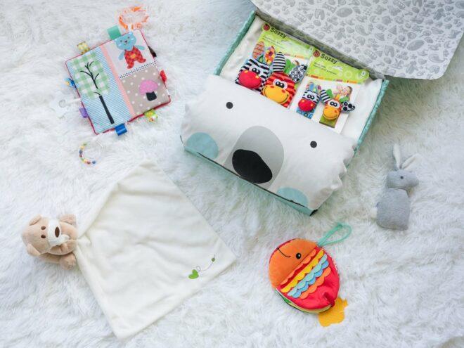 Bear Bear Kaiby Box KB5078